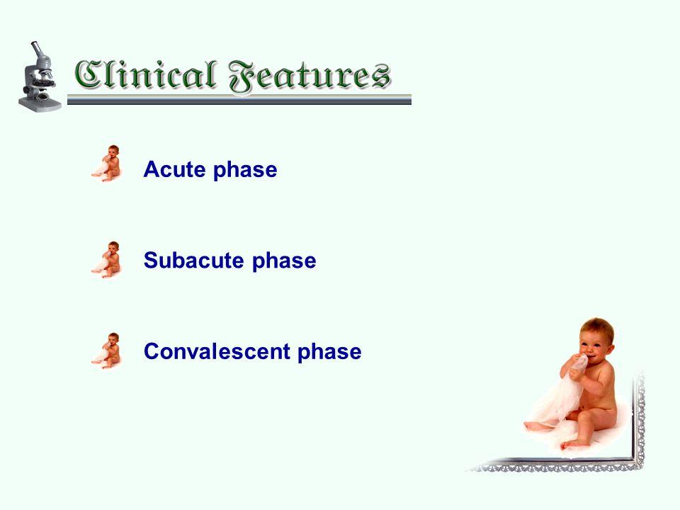 Acute phase Subacute phase Convalescent phase