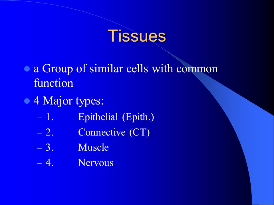 Tissues a Group of similar cells with common function 4 Major types: – 1.Epithelial (Epith.) – 2.Connective (CT) – 3.Muscle – 4.Nervous