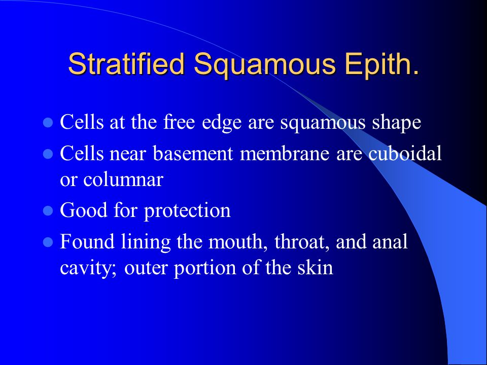 Stratified Squamous Epith. Cells at the free edge are squamous shape Cells near basement membrane are cuboidal or columnar Good for protection Found l