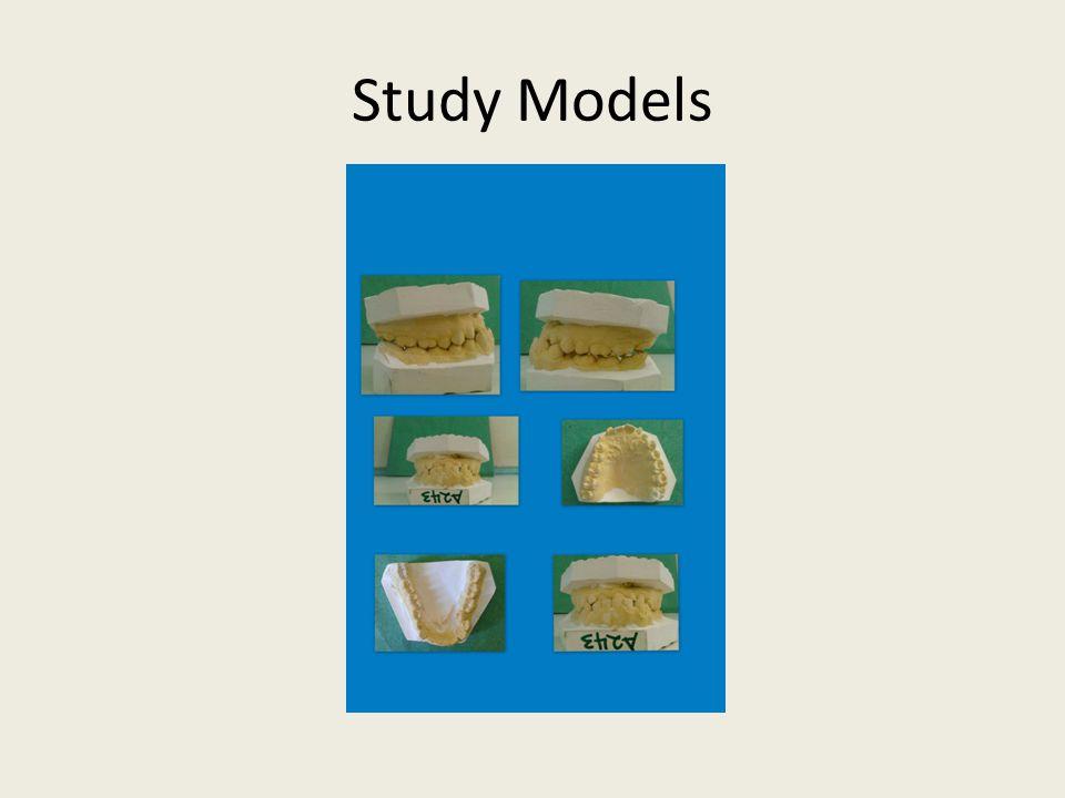 Study Models