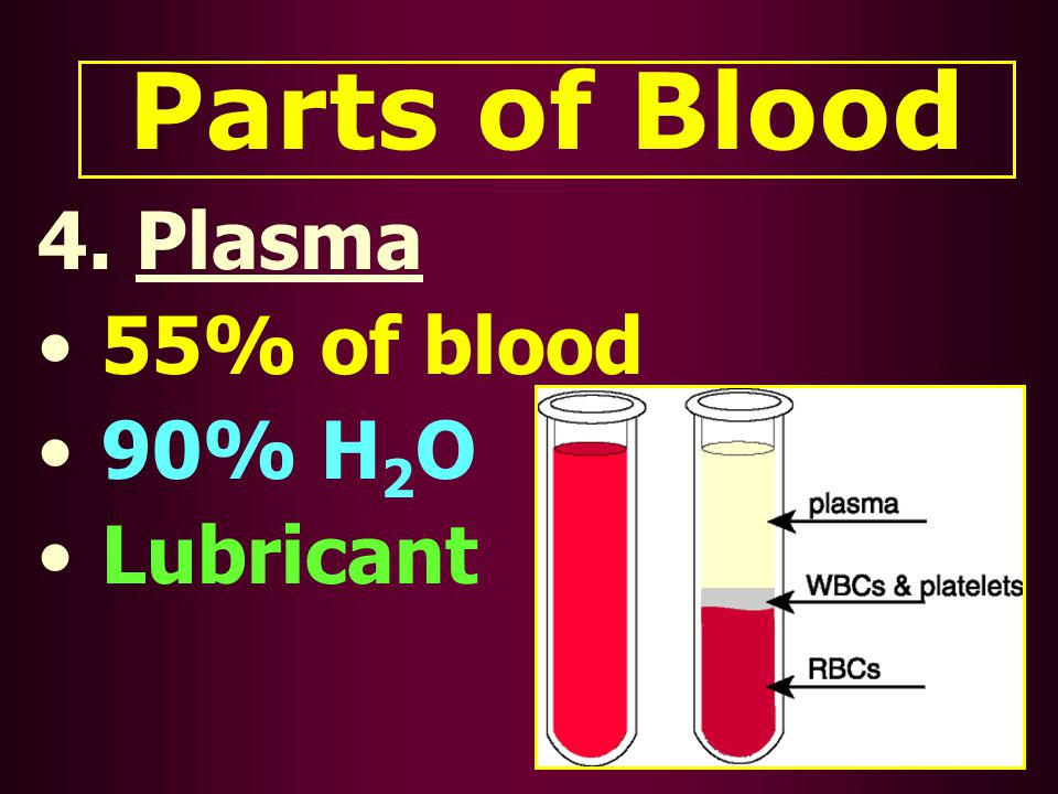 Parts of Blood 4. Plasma 55% of blood 90% H 2 O Lubricant