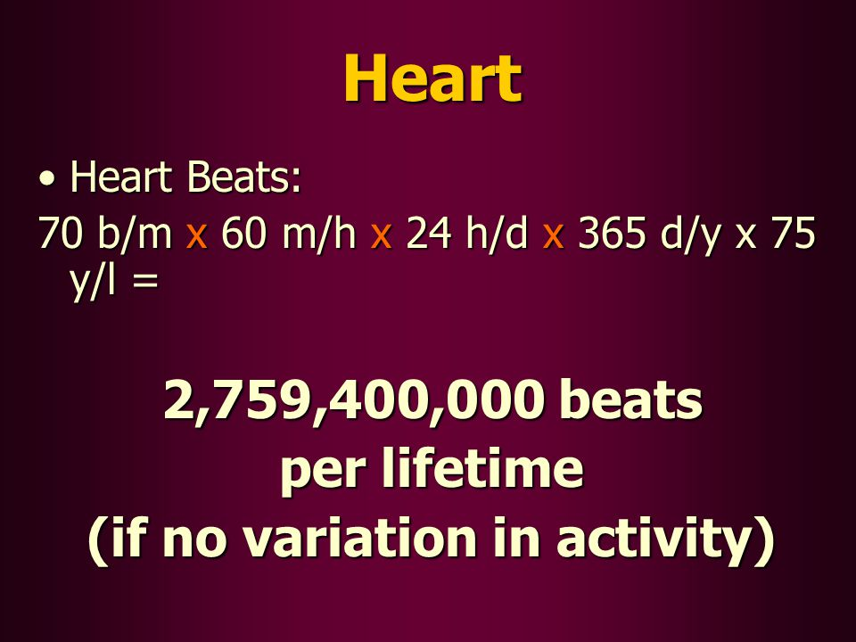 Heart Heart Beats:Heart Beats: 70 b/m x 60 m/h x 24 h/d x 365 d/y x 75 y/l = 2,759,400,000 beats per lifetime (if no variation in activity)