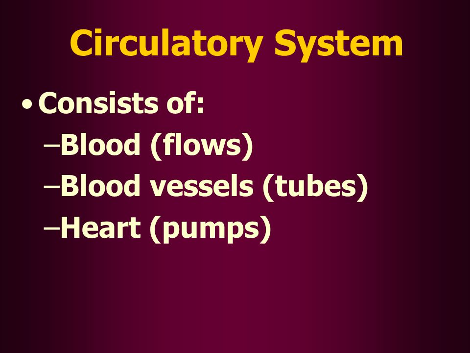 Circulatory System Consists of: – –Blood (flows) – –Blood vessels (tubes) – –Heart (pumps)