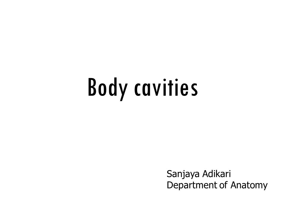 Body cavities Sanjaya Adikari Department of Anatomy