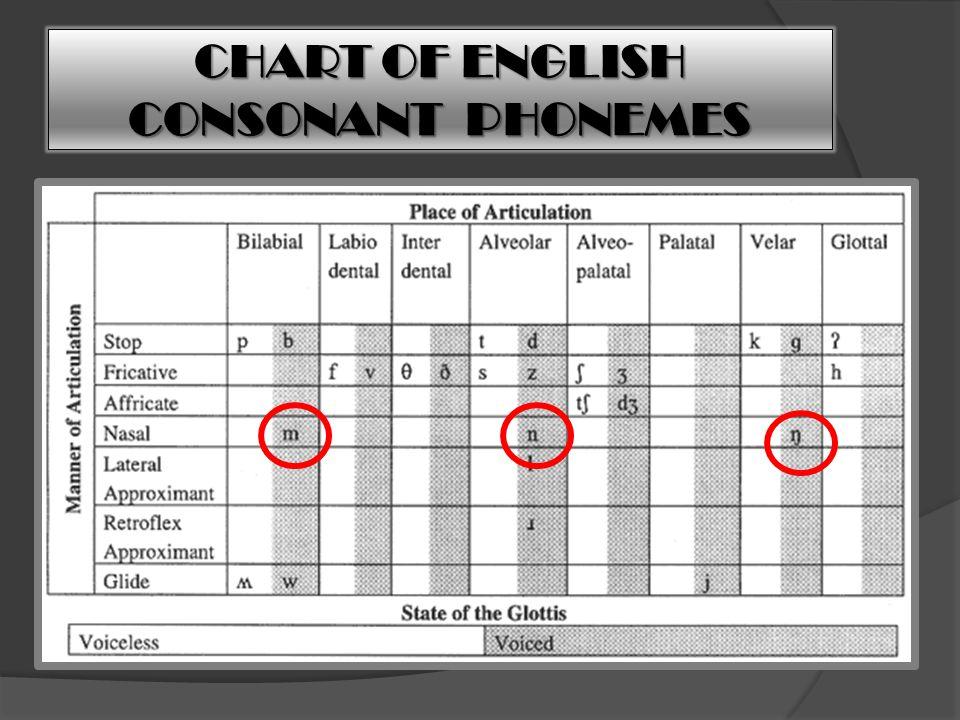 CHART OF ENGLISH CONSONANT PHONEMES