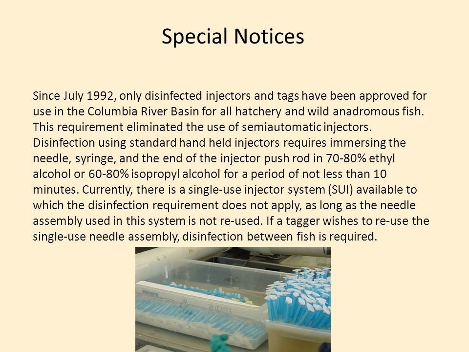 Special Notices Since July 1992, only disinfected injectors and tags have been approved for use in the Columbia River Basin for all hatchery and wild anadromous fish.