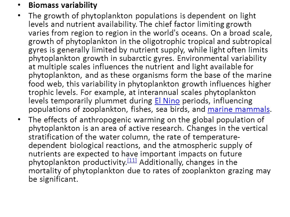 Biomass variability The growth of phytoplankton populations is dependent on light levels and nutrient availability.