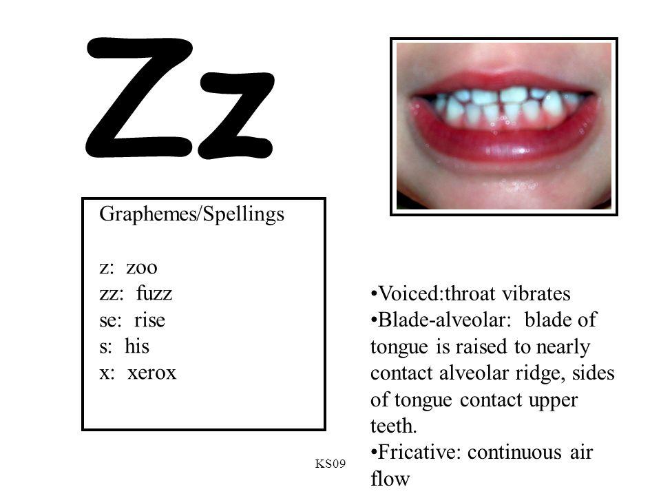 KS09 Zz Voiced:throat vibrates Blade-alveolar: blade of tongue is raised to nearly contact alveolar ridge, sides of tongue contact upper teeth.