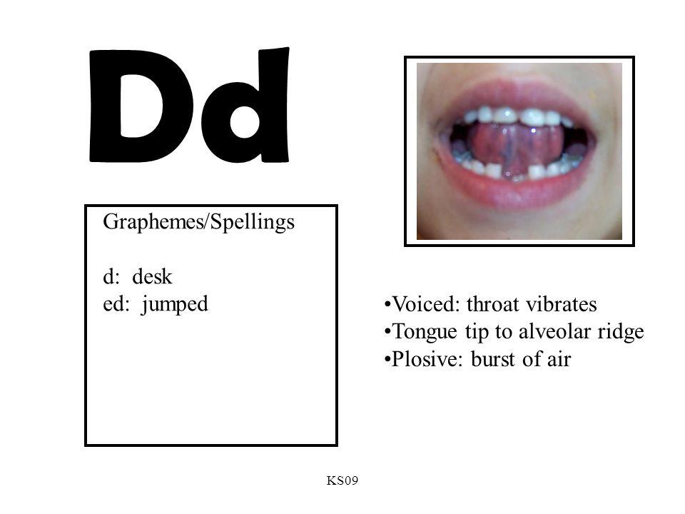 KS09 Dd Voiced: throat vibrates Tongue tip to alveolar ridge Plosive: burst of air Graphemes/Spellings d: desk ed: jumped