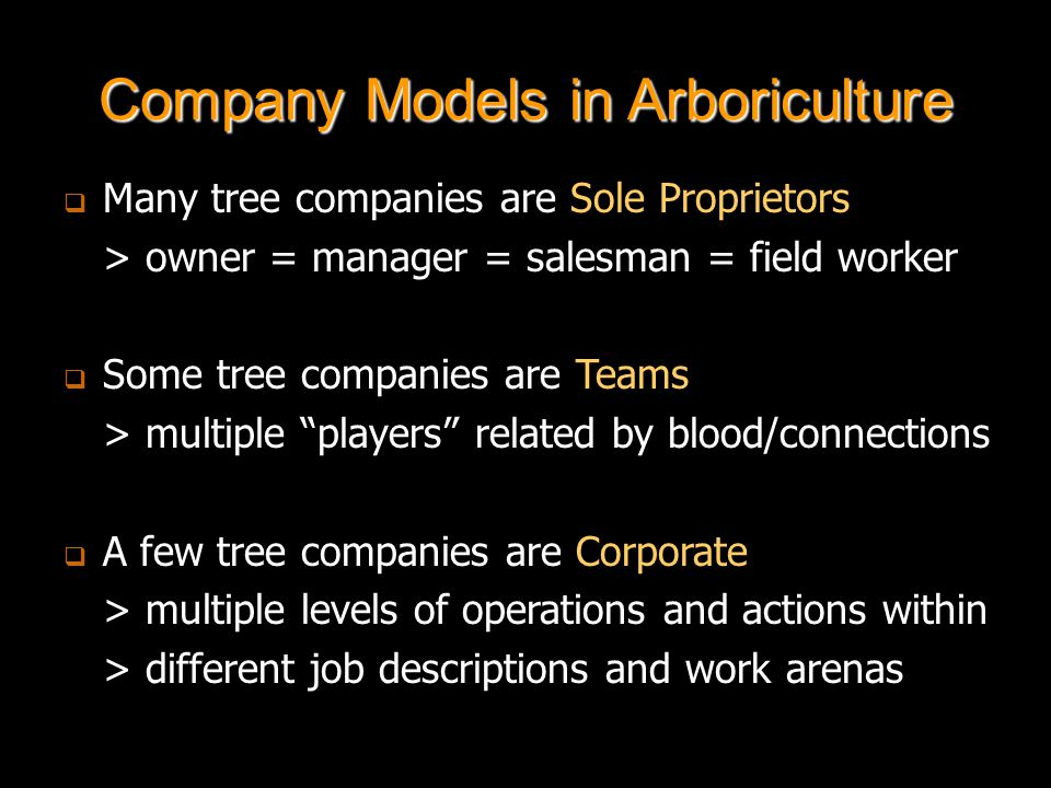 Company Models in Arboriculture   Many tree companies are Sole Proprietors > owner = manager = salesman = field worker   Some tree companies are Teams > multiple players related by blood/connections   A few tree companies are Corporate > multiple levels of operations and actions within > different job descriptions and work arenas