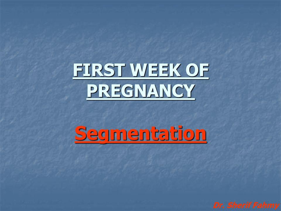 FIRST WEEK OF PREGNANCY Segmentation Dr. Sherif Fahmy
