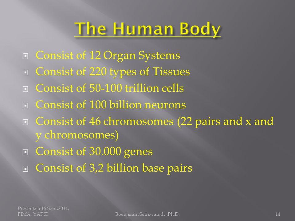 Presentasi 16 Sept.2011, FIMA, YARSIBoenjamin Setiawan,dr.,Ph.D.15 50-100 Trillion Cells form the Building Block of the Human Body