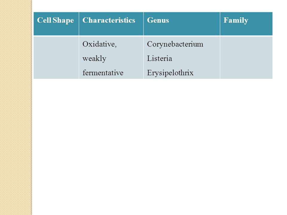 Cell ShapeCharacteristicsGenusFamily Oxidative, weakly fermentative Corynebacterium Listeria Erysipelothrix