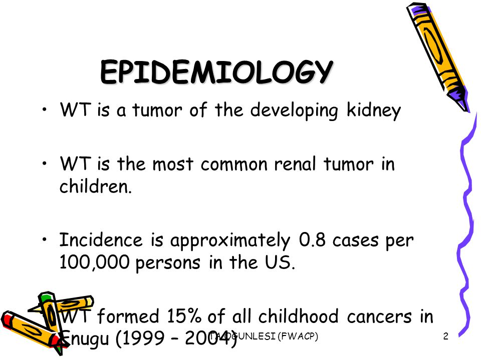 TA OGUNLESI (FWACP)2 EPIDEMIOLOGY WT is a tumor of the developing kidney WT is the most common renal tumor in children. Incidence is approximately 0.8