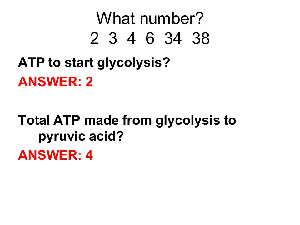 What number. 2 3 4 6 34 38 ATP to start glycolysis.