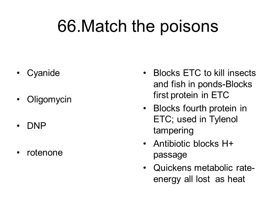 66.Match the poisons Cyanide Oligomycin DNP rotenone Blocks ETC to kill insects and fish in ponds-Blocks first protein in ETC Blocks fourth protein in ETC; used in Tylenol tampering Antibiotic blocks H+ passage Quickens metabolic rate- energy all lost as heat