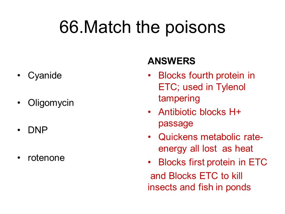 66.Match the poisons Cyanide Oligomycin DNP rotenone ANSWERS Blocks fourth protein in ETC; used in Tylenol tampering Antibiotic blocks H+ passage Quickens metabolic rate- energy all lost as heat Blocks first protein in ETC and Blocks ETC to kill insects and fish in ponds