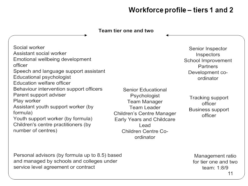 11 Workforce profile – tiers 1 and 2