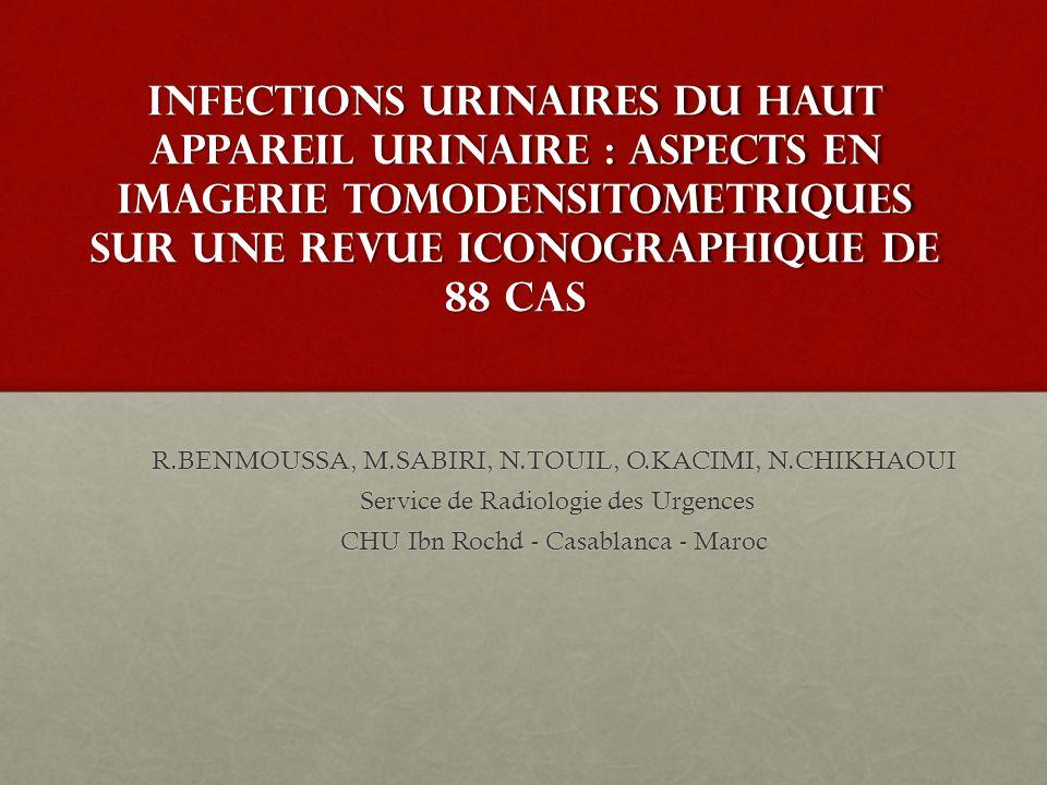 INFECTIONS URINAIRES DU HAUT APPAREIL URINAIRE : ASPECTS EN IMAGERIE TOMODENSITOMETRIQUES SUR UNE REVUE ICONOGRAPHIQUE DE 88 CAS R.BENMOUSSA, M.SABIRI