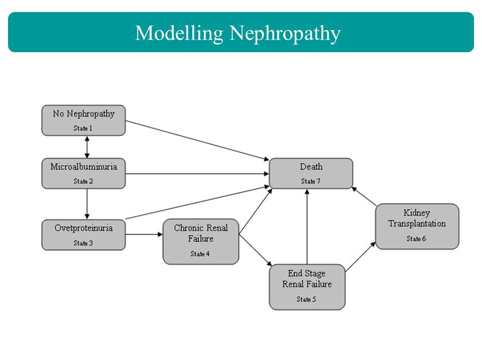 Modelling Nephropathy G