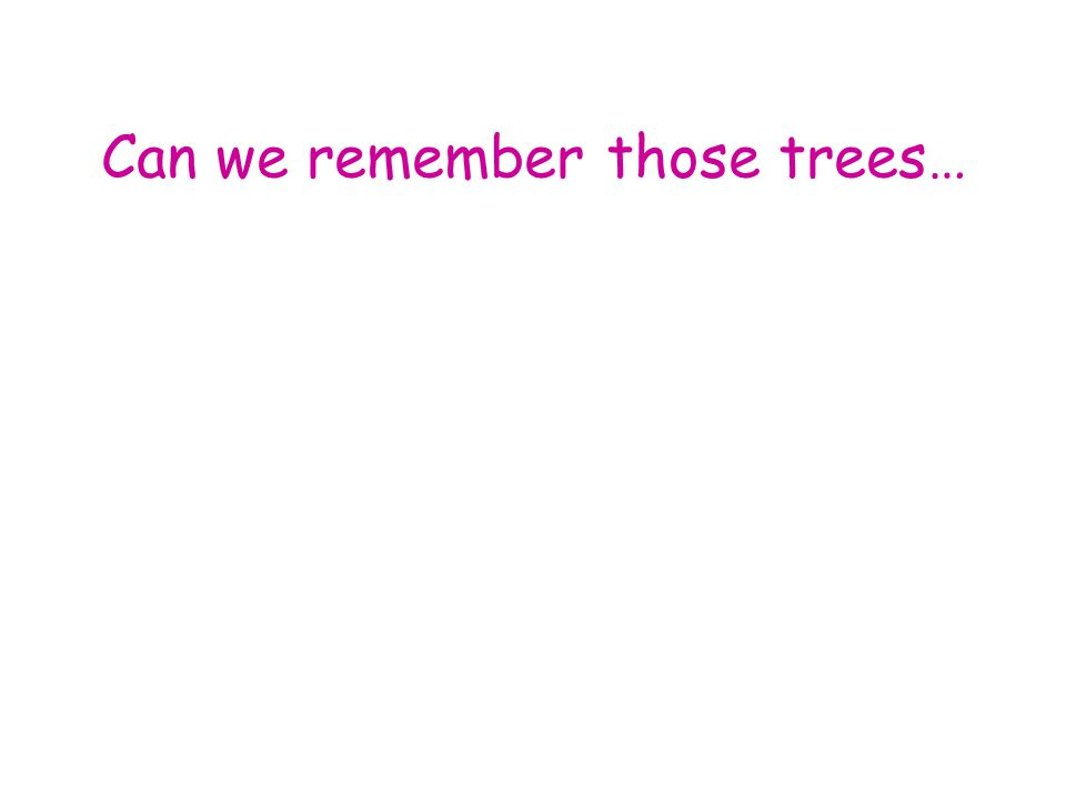Can we remember those trees…