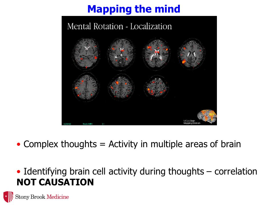Mapping the mind Complex thoughts = Activity in multiple areas of brain Identifying brain cell activity during thoughts – correlation NOT CAUSATION
