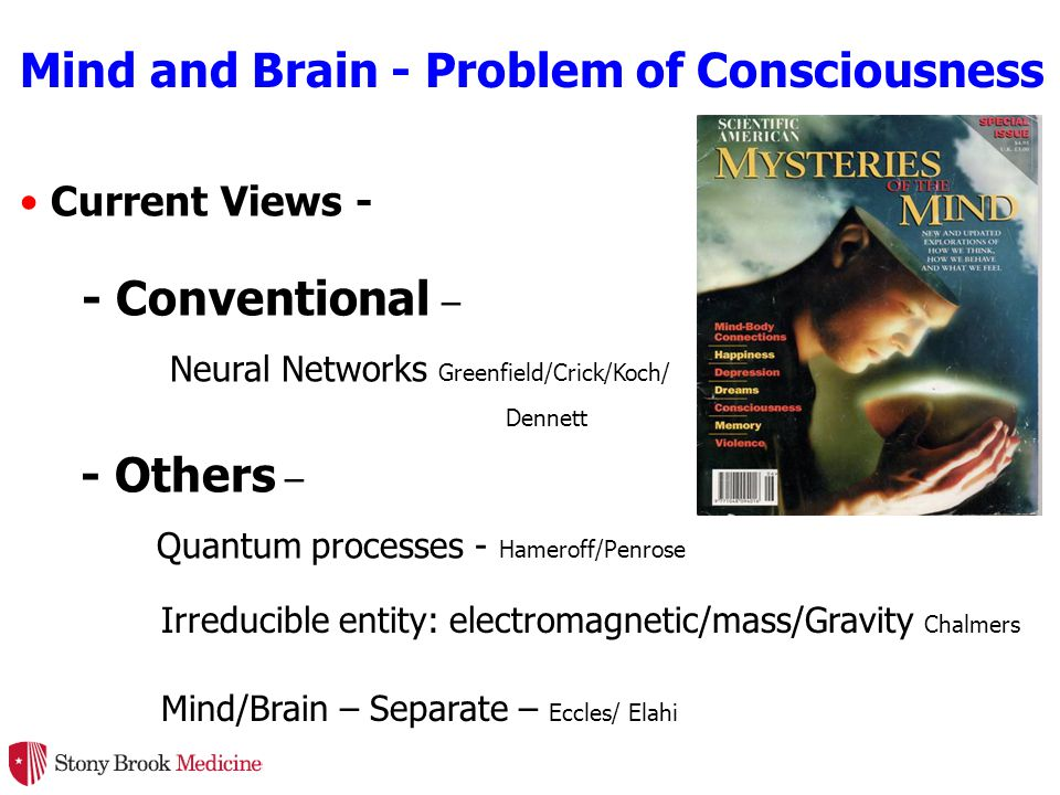 Mind and Brain - Problem of Consciousness Current Views - - Others – Quantum processes - Hameroff/Penrose Irreducible entity: electromagnetic/mass/Gravity Chalmers Mind/Brain – Separate – Eccles/ Elahi - Conventional – Neural Networks Greenfield/Crick/Koch/ Dennett