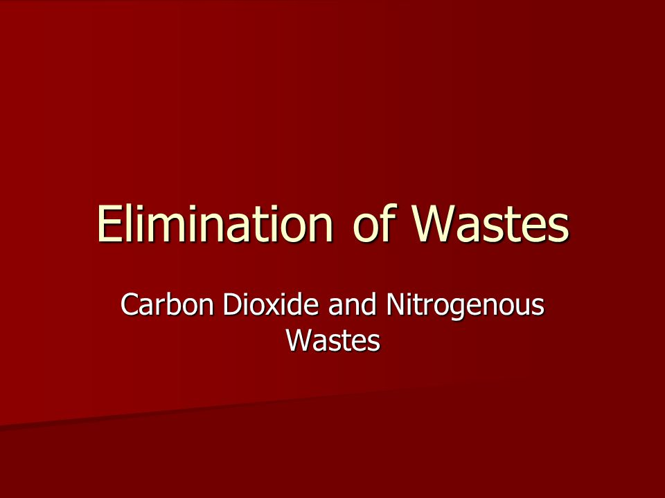 Elimination of Wastes Carbon Dioxide and Nitrogenous Wastes