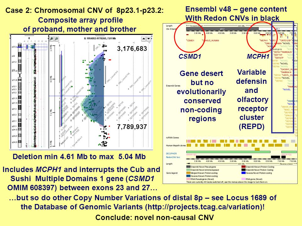 Composite array profile of proband, mother and brother 3,176,683 7,789,937 Ensembl v48 – gene content With Redon CNVs in black Deletion min 4.61 Mb to