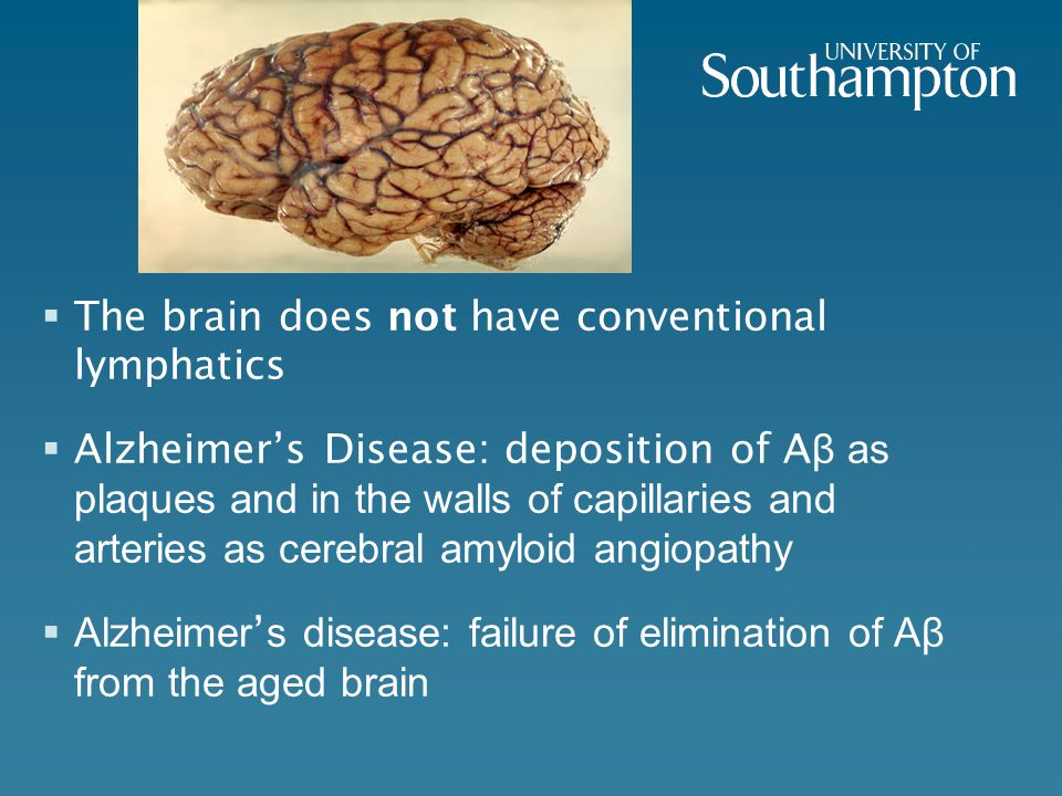 13 Failure of drainage of Soluble Aβ and other metabolites - Cognitive Decline AβAβ Ageing of arteries Brain