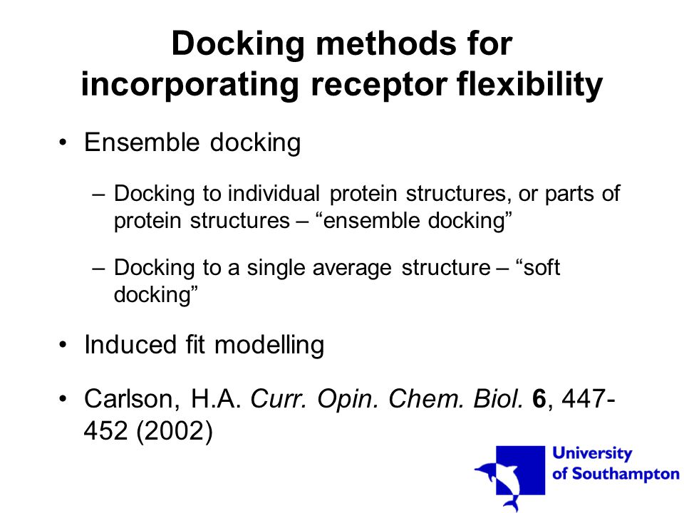 "Docking methods for incorporating receptor flexibility Ensemble docking –Docking to individual protein structures, or parts of protein structures – ""e"