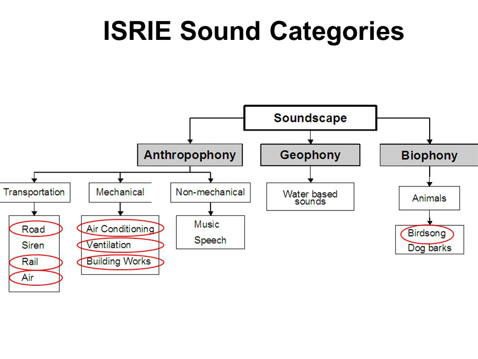 Audio lab Signal Classification What features? TDSC Which classifier? ANN – MLP, LVQ Which Sounds?