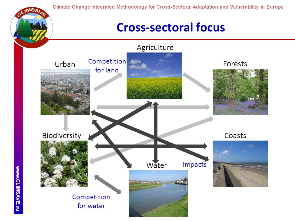 Climate Change Integrated Methodology for Cross-Sectoral Adaptation and Vulnerability in Europe www.CLIMSAVE.eu Cross-sectoral focus Urban Agriculture Forests Biodiversity Water Coasts Competition for land Competition for water Impacts