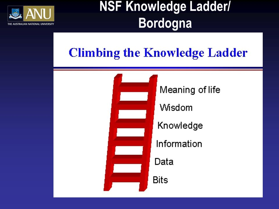 NSF Knowledge Ladder/ Bordogna
