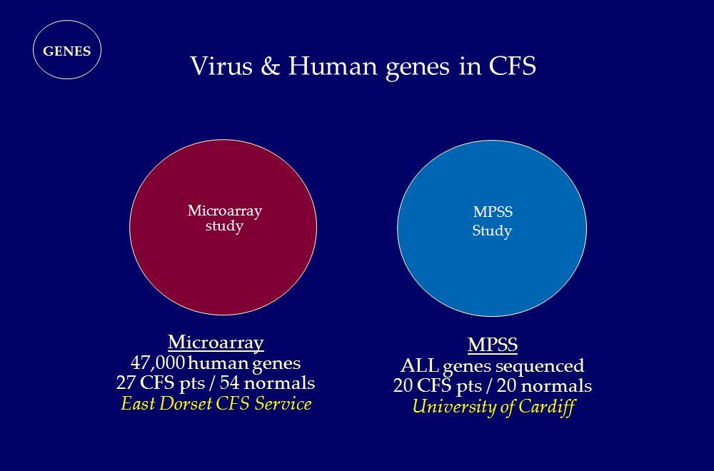 Virus & Human genes in CFS Microarray study MPSS Study GENES Microarray 47,000 human genes 27 CFS pts / 54 normals East Dorset CFS Service MPSS ALL ge