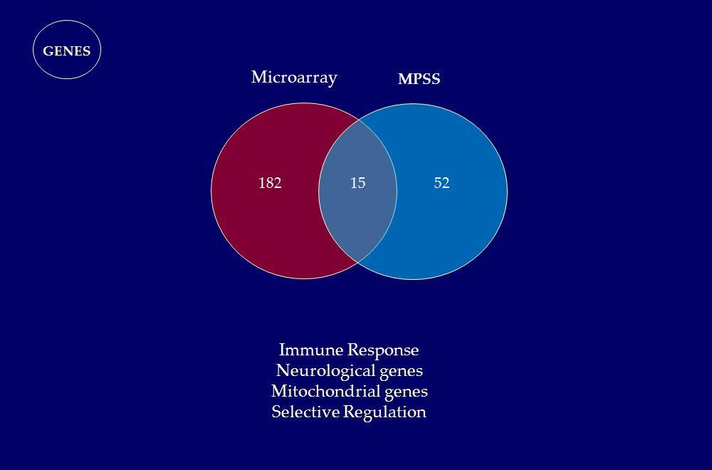 Microarray MPSS GENES 1552182 Immune Response Neurological genes Mitochondrial genes Selective Regulation