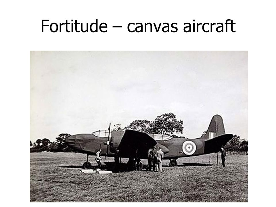 Fortitude – canvas aircraft