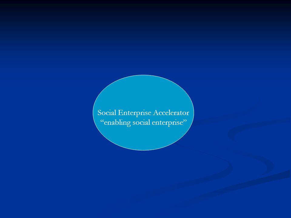 Social Enterprise Accelerator enabling social enterprise