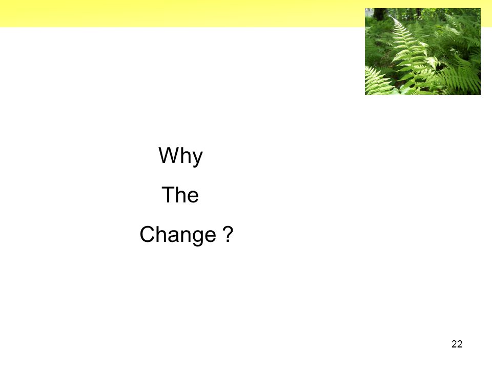 22 Why The Change ?