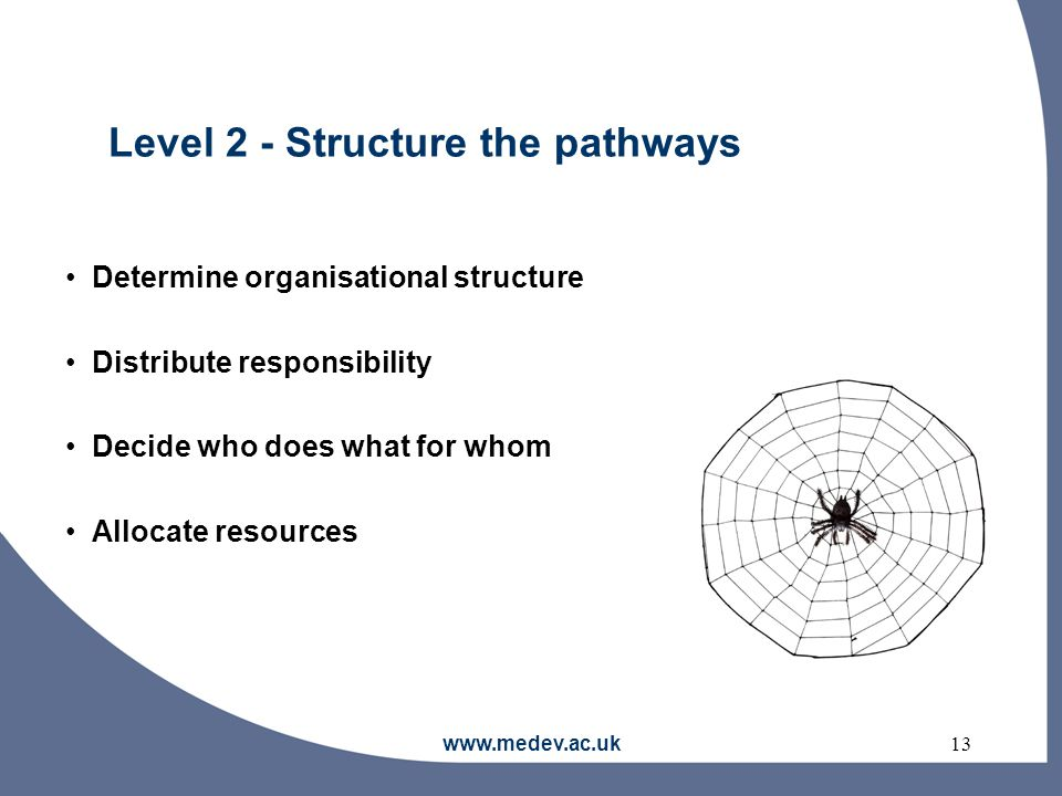 www.medev.ac.uk13 Level 2 - Structure the pathways Determine organisational structure Distribute responsibility Decide who does what for whom Allocate resources