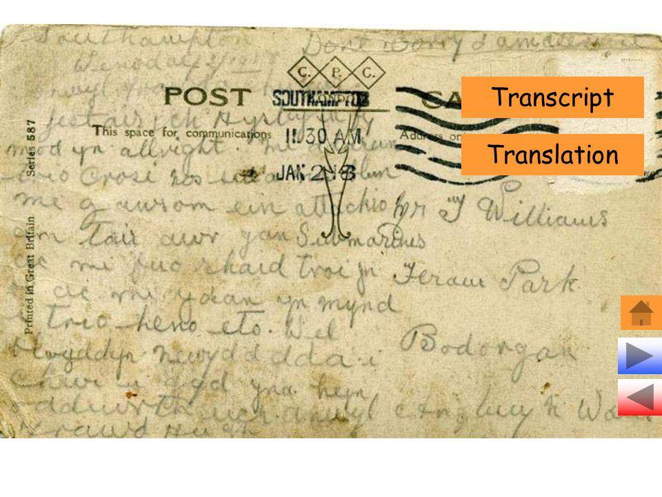 Translation Transcript