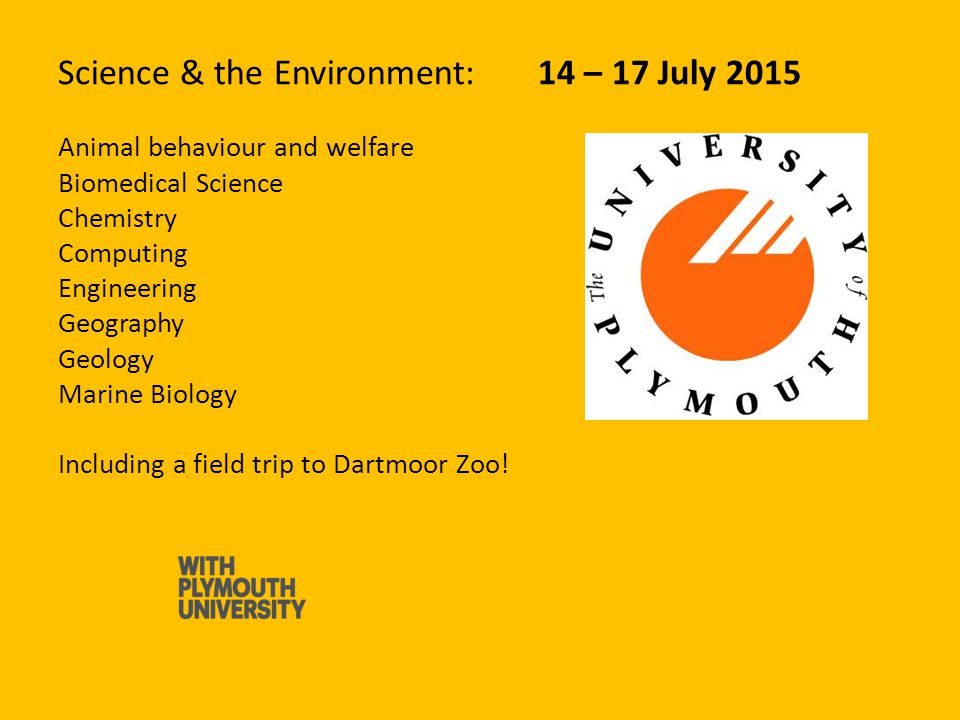 Business : 14 – 17 July 2015 Business (with a simulation game) Careers and employability Marketing and sustainability The role of social media in the work place Tourism and hospitality Including trips to Plymouth Music Zone and educational field trip to the National Marine Aquarium