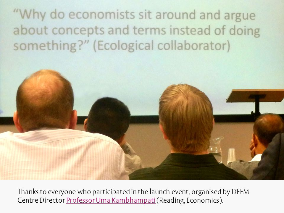 Thanks to everyone who participated in the launch event, organised by DEEM Centre Director Professor Uma Kambhampati (Reading, Economics).Professor Uma Kambhampati