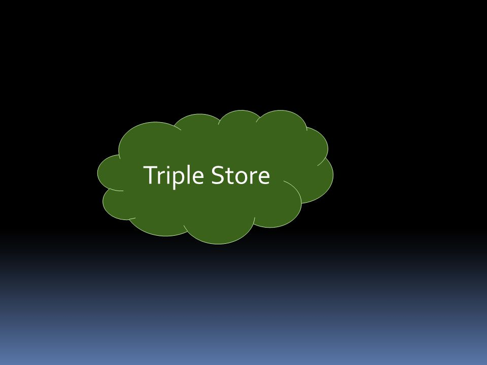 Triple Store