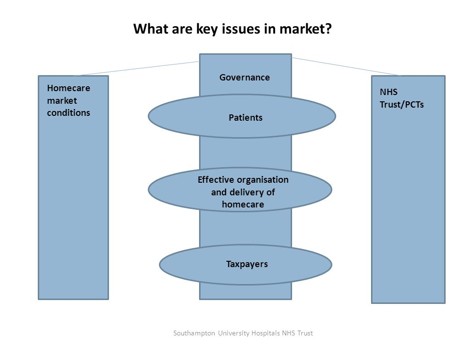 What are key issues in market? Homecare market conditions NHS Trust/PCTs Patients Effective organisation and delivery of homecare Taxpayers Governance