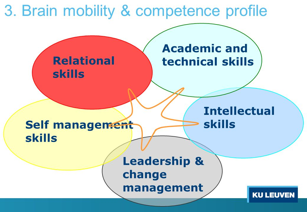 Leadership & change management Intellectual skills Self management skills Academic and technical skills Relational skills 3. Brain mobility & competen