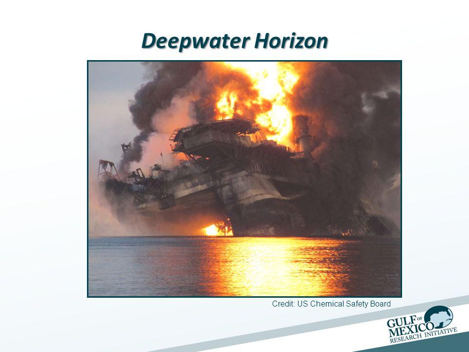 Deepwater Horizon Photograph by Joel Sartore, National Geographic