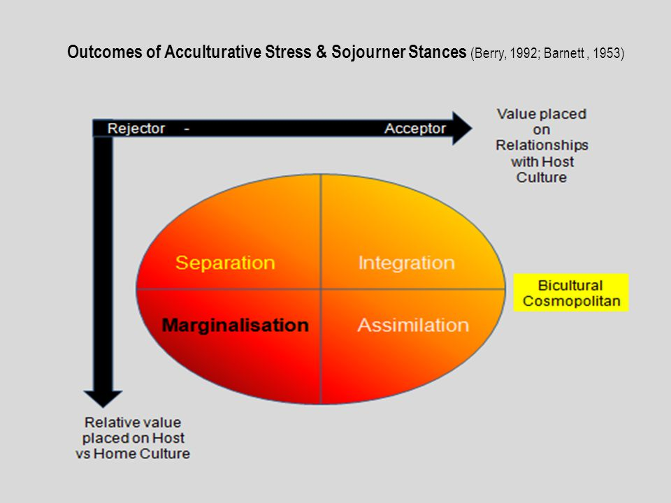 Outcomes of Acculturative Stress & Sojourner Stances (Berry, 1992; Barnett, 1953)