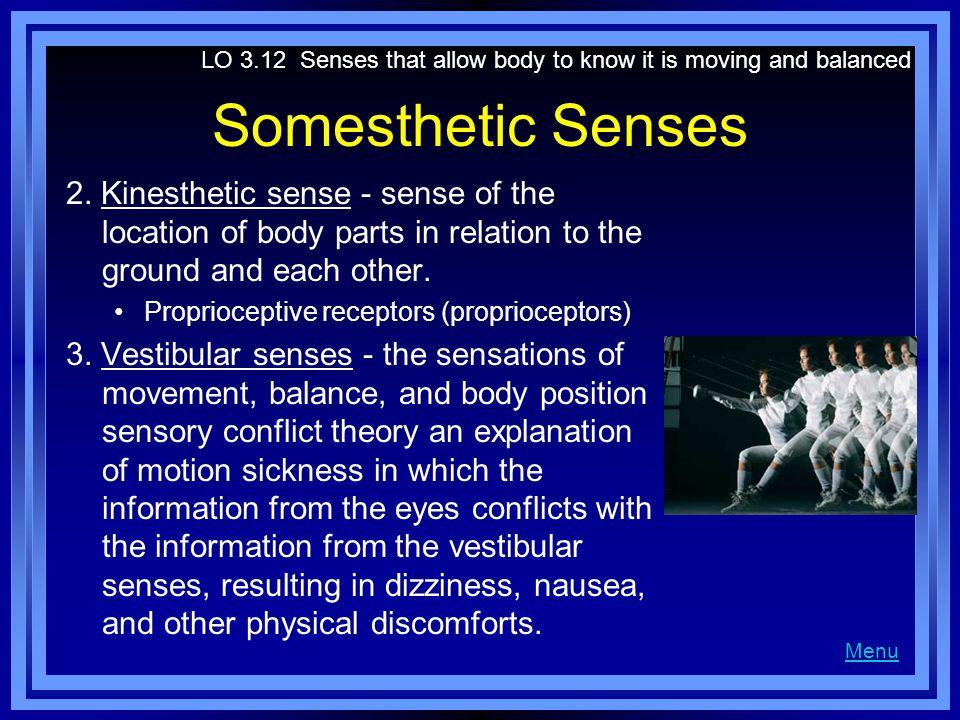 Somesthetic Senses 2.
