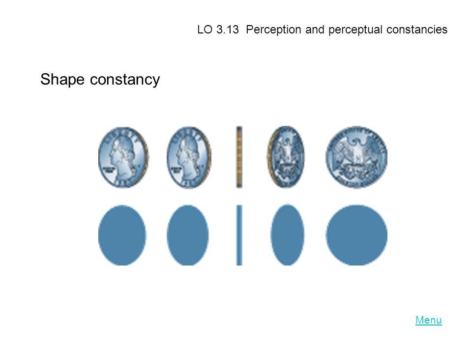 Menu LO 3.13 Perception and perceptual constancies Shape constancy